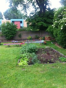 Veg patch: Wool benches